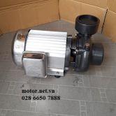 Máy bơm nước lưu lượng lớn Vina Pump VN 750