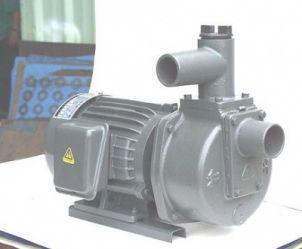 Máy bơm tự hút Đầu Gang 1HP HSP250-1.75 265